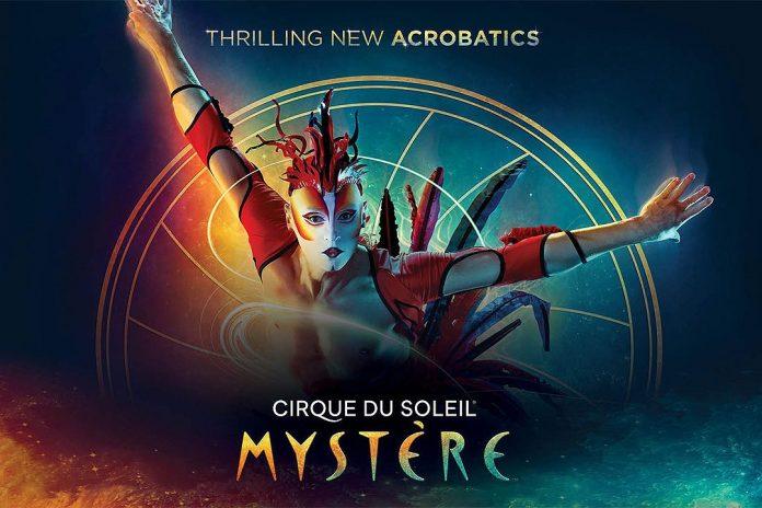 Cirque du Soleil Mystere